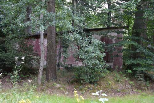 Waldseebad_304